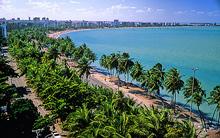 Coqueiros Maceió Alagoas Foto Christian Kenepper