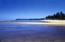 Praia de Tambada Paraíba Foto Sergio Fecuri